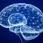 Brain Plasticity: Core Principles to Remodel Your Thinking